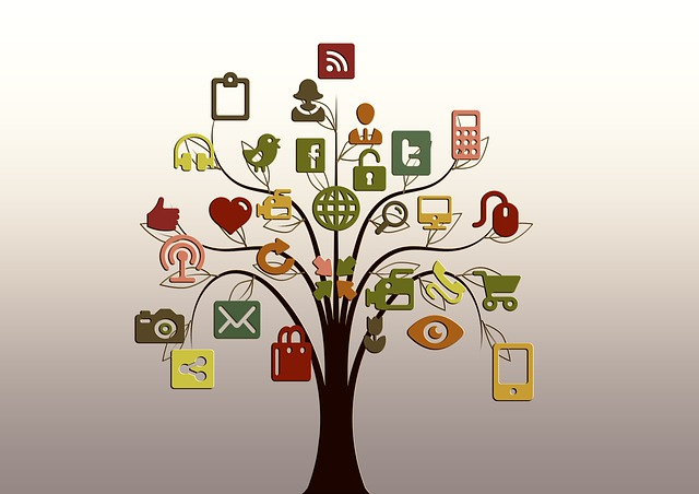 Comprehending The Concept of Web 2.0